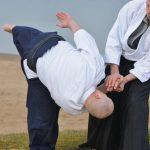 Aikijudo / Aikijutsu cursus